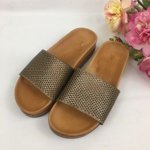 FRYE Lily Perforated Slides Sandals 8.5 NWOB